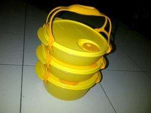 carry-all-bowl-dychana-tupperware-promo-ready-stock-bulan-november-desember-2012-7-sms-085648545252.jpg