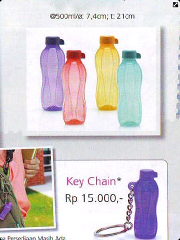 katalog tupperware promo januari 2013 | Dychana Tupperware